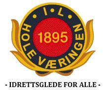 holevaering logo